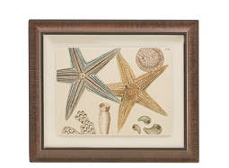 Horizontal Sea Collection I Framed Wall Art