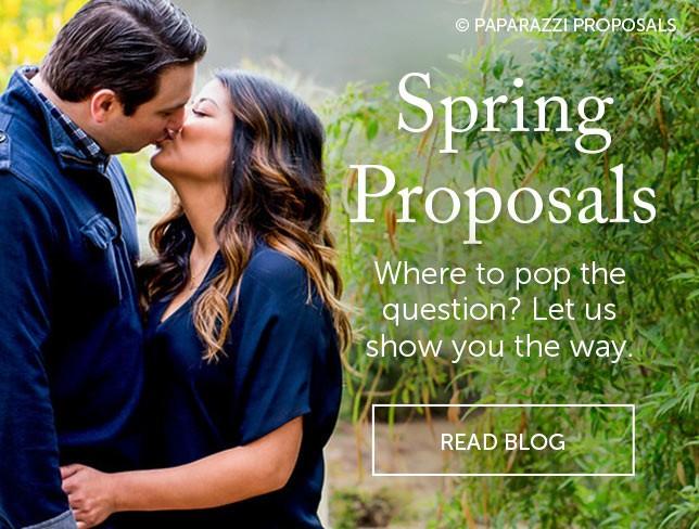 Spring Proposals