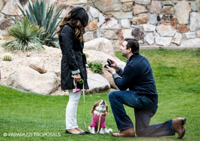 Perfect Proposal Ideas