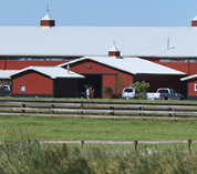 The Big Red Barn at Grand Prix Equestrian