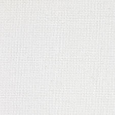 White Canvas Fabric Swatch