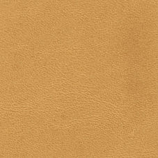 Honey Leather Fabric Swatch