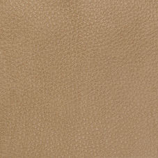 Saddle Leather Swatch