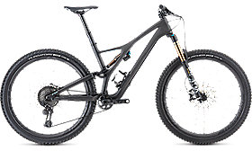 S-WORKS SJ FSR MEN CARBON 29