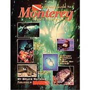 Dive Guide To Monterey, CA