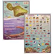 Waterproof Catalina Island Map