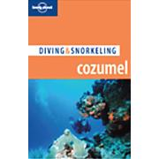 Guide To Diving Cozumel