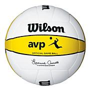 AVP Official Game Ball