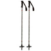 MSR Denali II Snowshoe Poles, Light Grey, medium