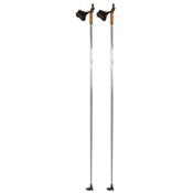 Alpina Yoko 3100 Cross Country Ski Poles, Grey, medium