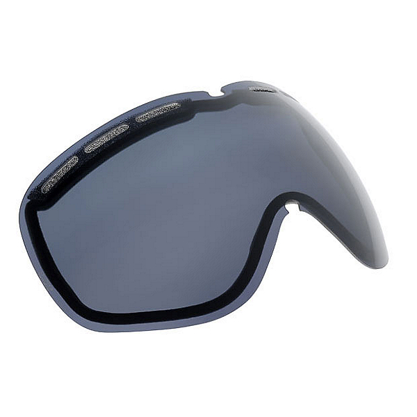 Electric EG2 Polarized Goggle Replacement Lens, , 600