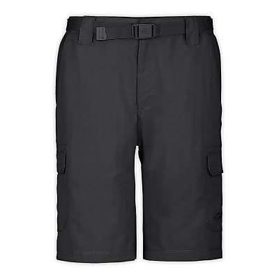 The North Face Paramount Cargo Shorts, , large
