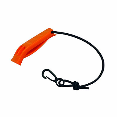 Seals Safety Whistle 2017, , viewer