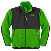 The North Face Denali Boys Jacket, R Glo Green, medium