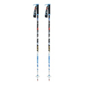 Line Pollards Paint Brush Ski Poles 2013, , medium
