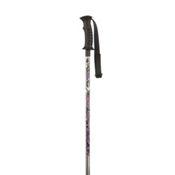 K2 Sprout Kids Ski Poles 2013, Silver, medium