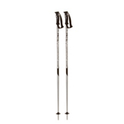 Alpina Bound Ski Poles 2013, , medium