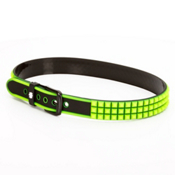 NXTZ Hoist Belt, Lime, medium
