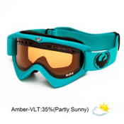 Dragon DX Goggles 2013, Matte Teal-Amber, medium
