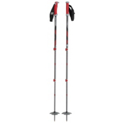 Black Diamond Expedition Ski Poles 2013, Grey-Red, medium