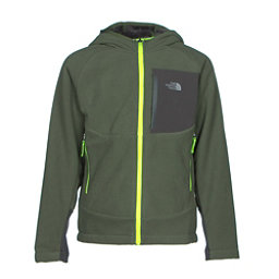 The North Face Chimborazo Kids Hoodie, Terrarium Green, 256