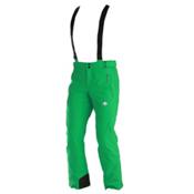 Descente Peak Mens Ski Pants, Green, medium