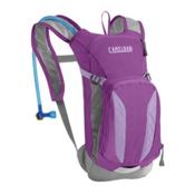 CamelBak Mini-M.U.L.E. Hydration Pack, Purple Cactus Flower-Sheer Lil, medium