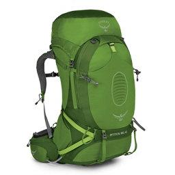 Osprey Atmos AG 65 Backpack 2017, Absinthe Green, 256