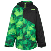 The North Face Calisto Insulated Boys Ski Jacket, Photo Real Mountain Print, medium