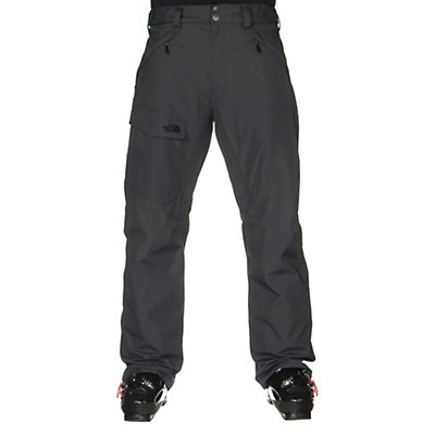 The North Face Freedom Insulated Mens Ski Pants, , viewer