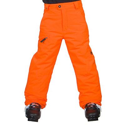 Spyder Propulsion Kids Ski Pants (Previous Season), , viewer