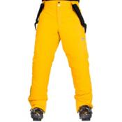Descente Swiss WC Mens Ski Pants, Helmet Yellow, medium