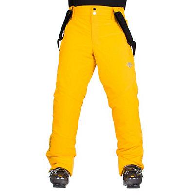 Descente Swiss WC Mens Ski Pants, , viewer