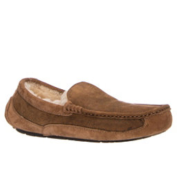 UGG Ascot Bomber Mens Slippers, Bomber Jacket Chestnut, 256