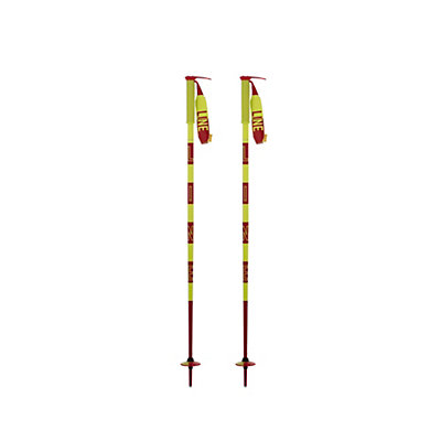 Line Pin Ski Poles, , viewer