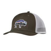 Patagonia Fitz Roy Bison Trucker Hat, Kelp Forest, medium