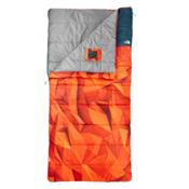The North Face Homestead Twin 20 Sleeping Bag, Low Poly Print, medium