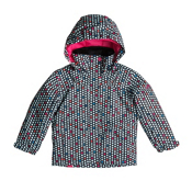 Roxy Mini Jetty Toddler Girls Ski Jacket, , medium