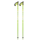 Scott Punisher Ski Poles 2017, Green, medium