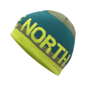 The North Face Youth Anders Beanie Kids Hat, Terrarium Green, medium