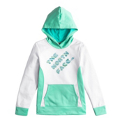 The North Face Girls Surgent Pullover Hoodie, TNF White-Ice Green Heather, medium