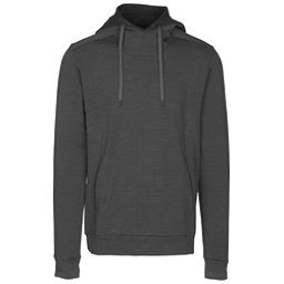Arc'teryx Elgin Mens Hoodie, Pilot Heather, 256