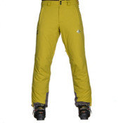 Descente Stock Mens Ski Pants, Lichen Green, medium