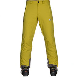 Descente Stock Mens Ski Pants, Lichen Green, 256