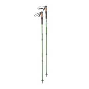 Kelty Range 2.0 Trekking Poles, Green, medium
