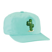 Coal The Oasis Hat, Mint, medium