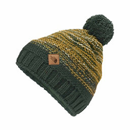 The North Face Antlers Beanie, Darkest Spruce-Silver Pine Gre, 256
