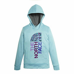 The North Face Surgent Pullover Kids Hoodie, Nimbus Blue, 256
