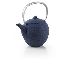 Blue Mayu Cast Iron Teapot
