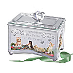Purr-fect Reflections Of Love Kitten Lovers Music Box